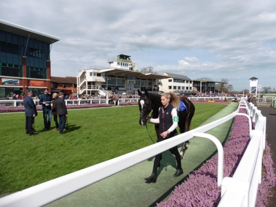 Taunton Racecourse Meeting